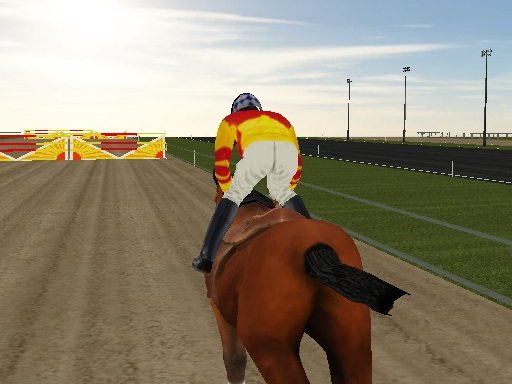 Play Horse Rider Now!