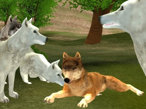 Play Wild Wolves Now!