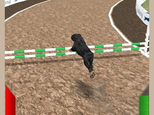 Play Crazy Real Dog Race Now!