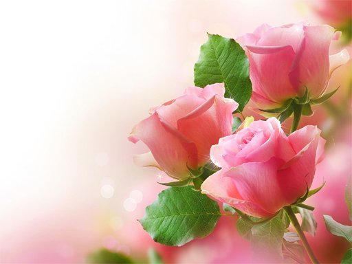 Play Pink Roses Puzzle Now!
