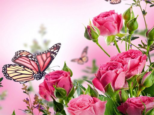 Play Butterflies Puzzle Now!