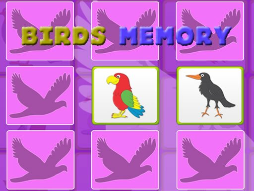 Play Kids Memory Game - Birds Now!