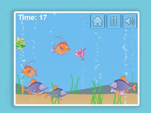 Play Aqua Challenge Now!