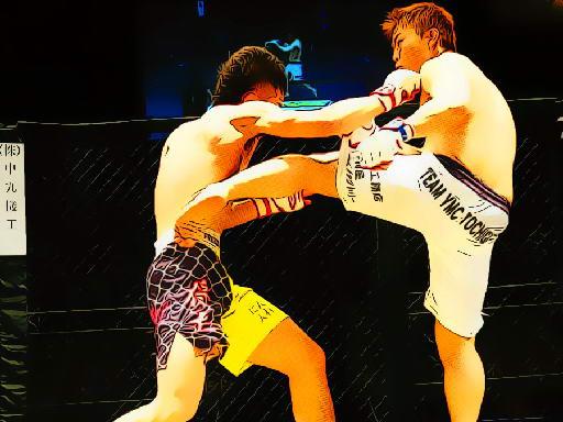 Play UFC Fighting Match Jigsaw Now!