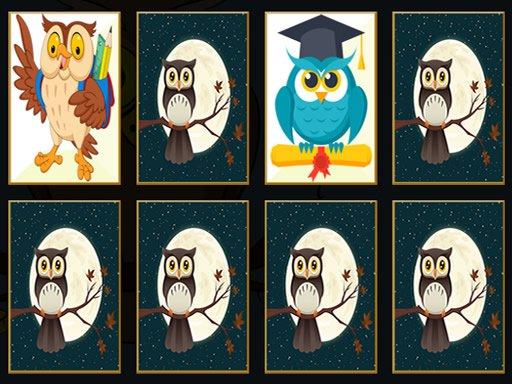 Play Cute Owl Memory Now!