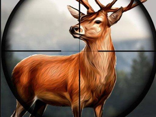 Play Safari Animal Hunter Now!