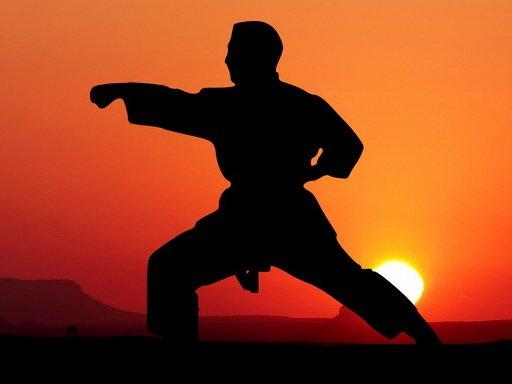 Play Karate Sunset Warriors Now!