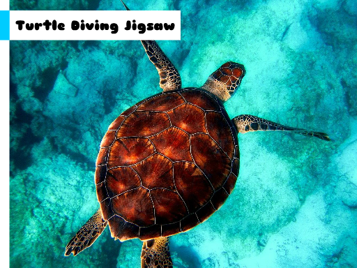 Play Turtle Diving Jigsaw Now!