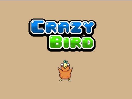 Play Crazy Bird Now!