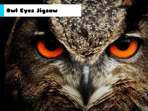 Play Owl Eyes Jigsaw Now!