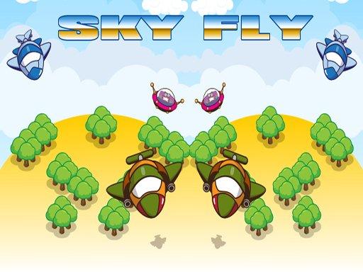 Play Sky Fly Now!