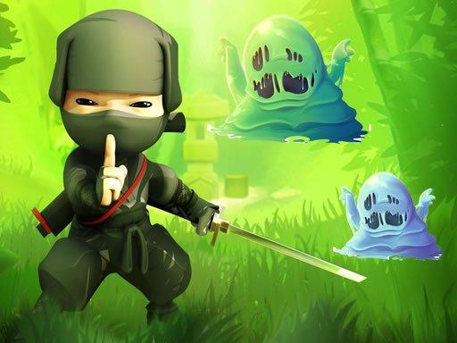 Play Ninja VS Slime Now!