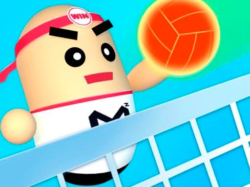 Play 3D Amazing VolleyBall Now!