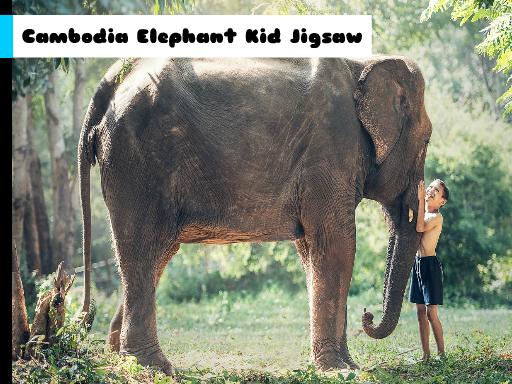 Play Cambodia Elephant Kid Jigsaw Now!