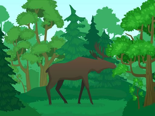 Play Wild Animals Coloring Now!