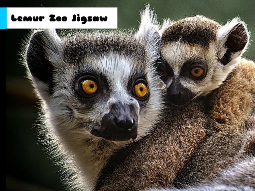 Play Lemur Zoo Jigsaw Now!