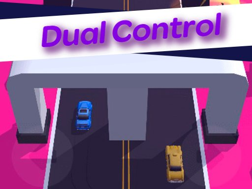 Play Dual Control 3D Now!